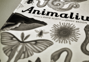 Animalium Featured